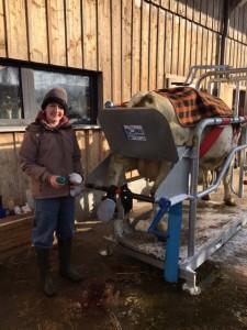 Deborah ist bei der Limaxoperation mit Susi unterwegs. Es ist so kalt, dass die Patientin mit einer Pferdedecke versorgt wurde.