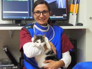 Kathrin und Schnurrli nach  dem Röntgen und vor der Blasenoperation